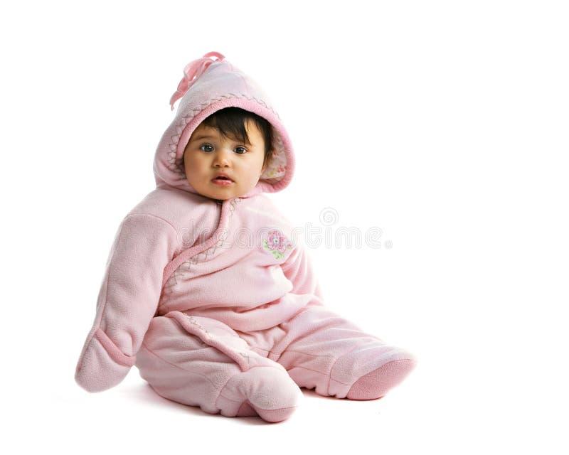 Liado en color de rosa fotografía de archivo libre de regalías