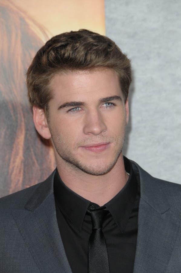 Liam Hemsworth royaltyfria foton