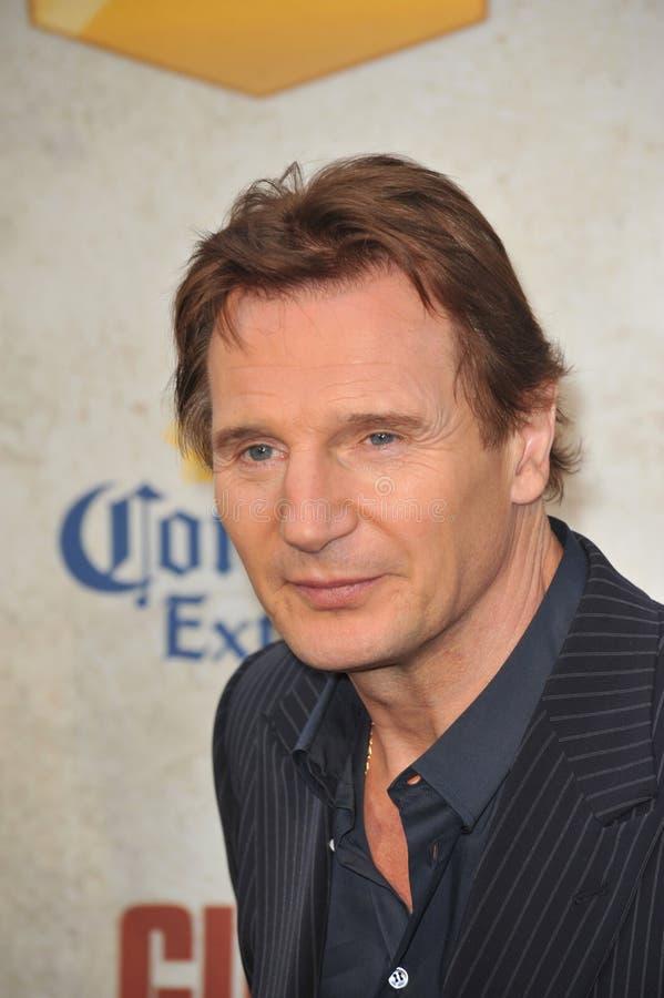 Liam Neeson obrazy stock
