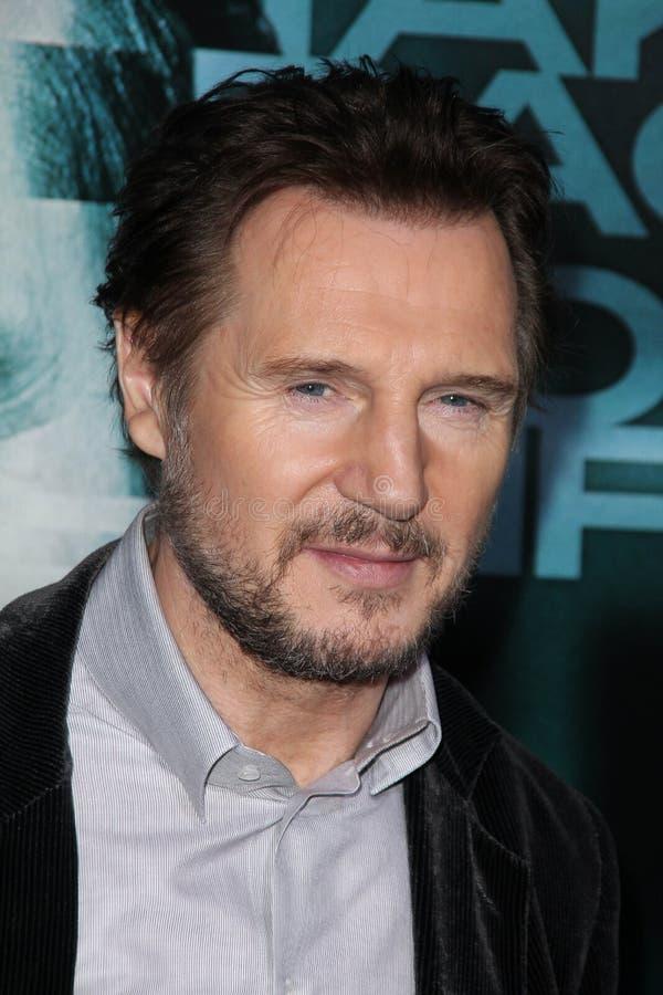 Liam Neeson fotografia royalty free