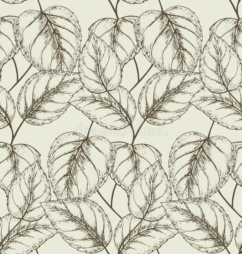 Download Liana stock photo. Image of pattern, element, decoration - 26496910