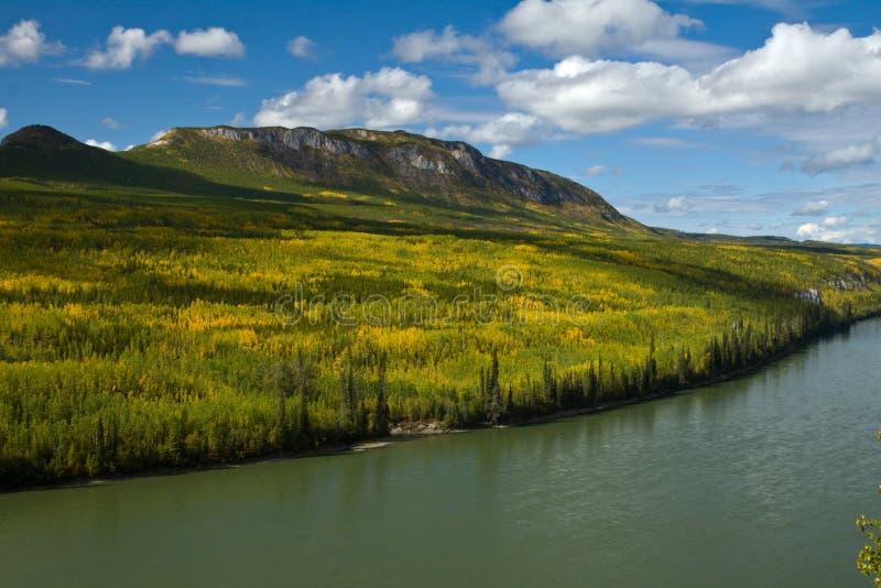 Liard-Fluss fließt die Vorberge durch, die in den Fallfarben untergetaucht werden lizenzfreie stockbilder