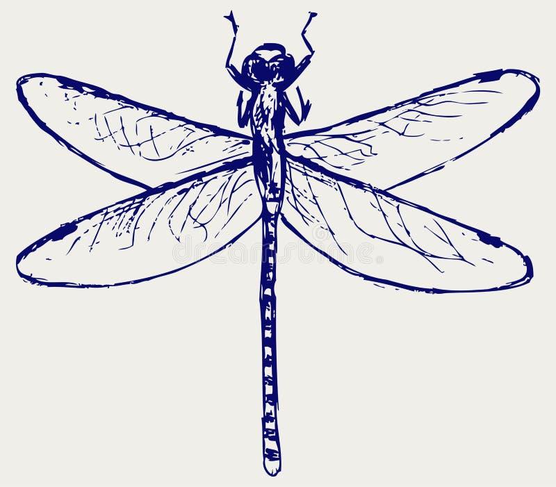 Download Libélula esboçado ilustração do vetor. Ilustração de mosca - 26513839
