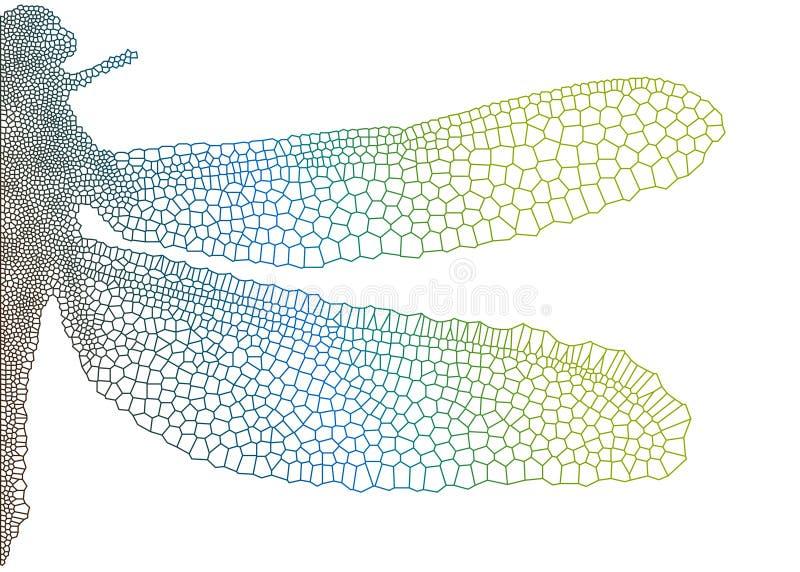 Libélula hermosa ilustración del vector