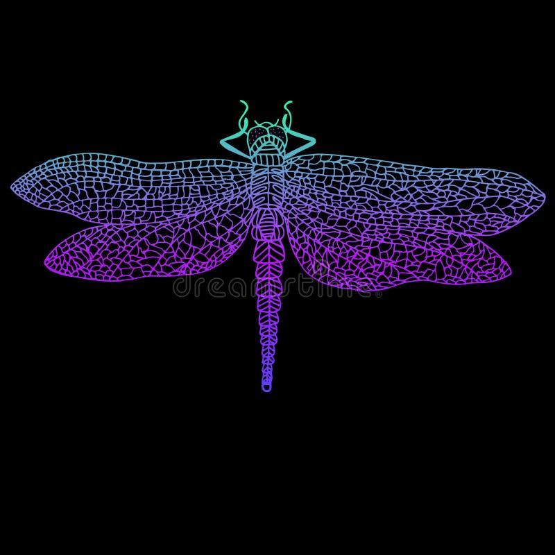 Libélula, inseto voado bonito, cor violeta azul brilhante para fora ilustração do vetor