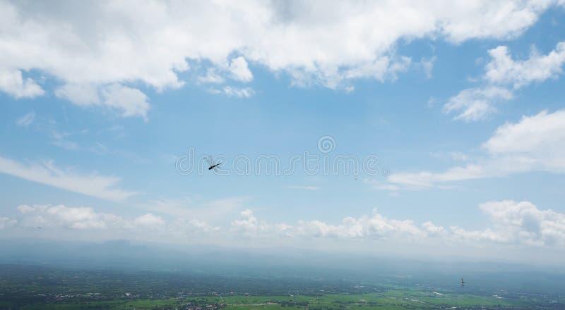 Libélula no céu azul imagens de stock