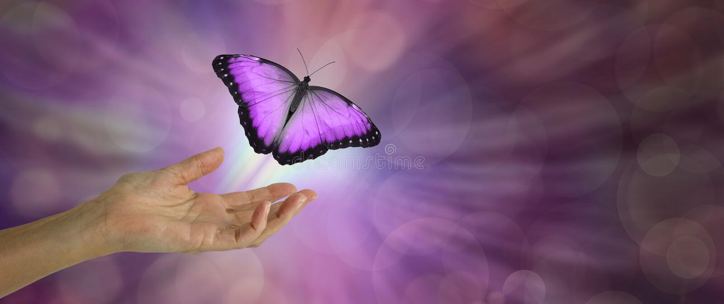 Libération d'esprit représentée par un papillon magenta effectuant le vol photo stock