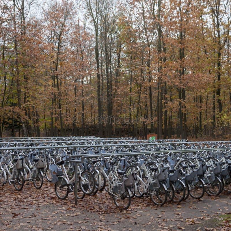 Libérez les bicyclettes de blanc près de l'entrée au parc national Hoge Veluwe i photographie stock libre de droits