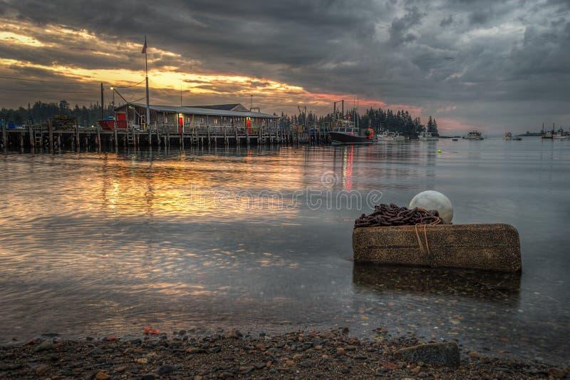Libbra dell'aragosta all'alba fotografie stock libere da diritti