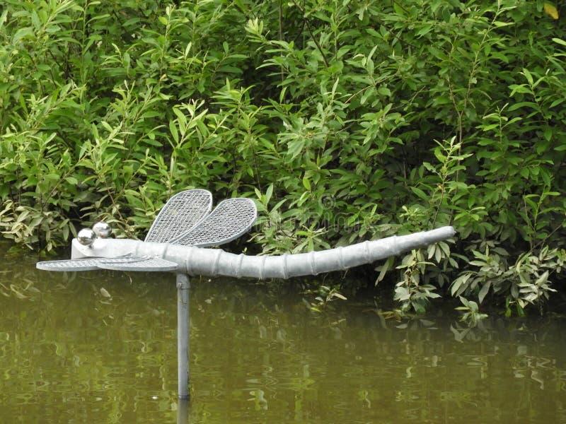 Libelle, Wasser, Strom, Gr?n, Wald stockbilder