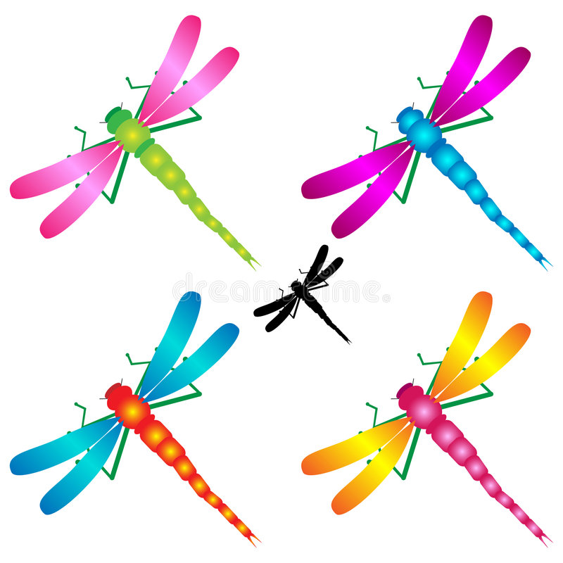 Libellen stock abbildung