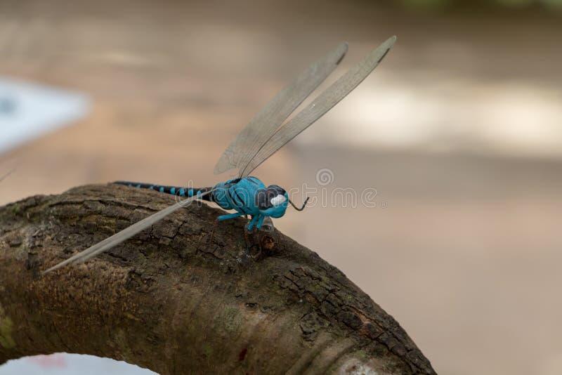 Libellenmodell sitzt auf Baumstamm lizenzfreie stockfotografie