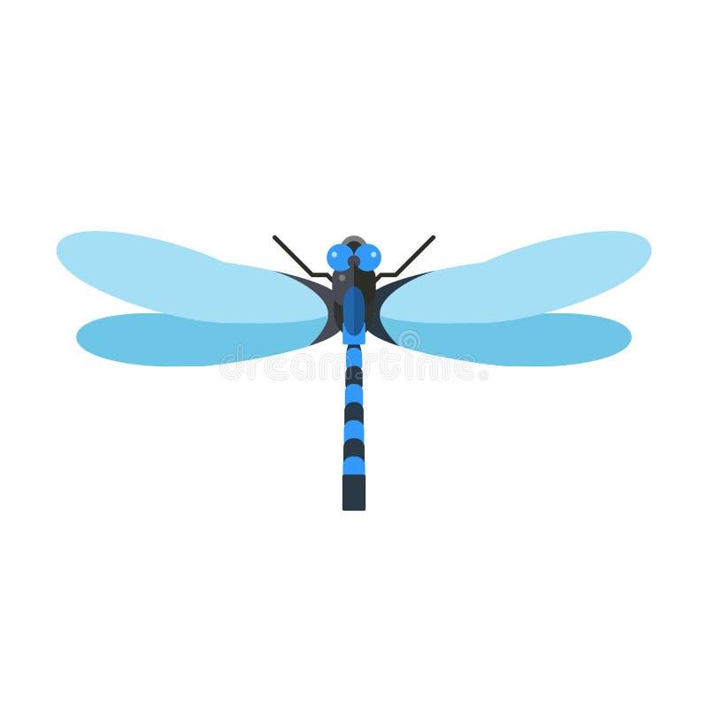 Libellenvektorillustration stock abbildung