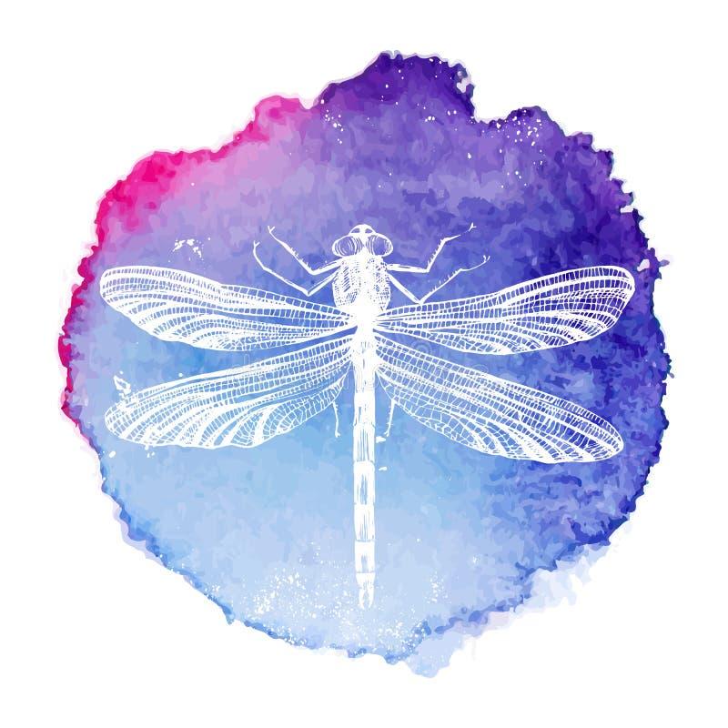 Libellula disegnata a mano sul fondo dell'acquerello royalty illustrazione gratis
