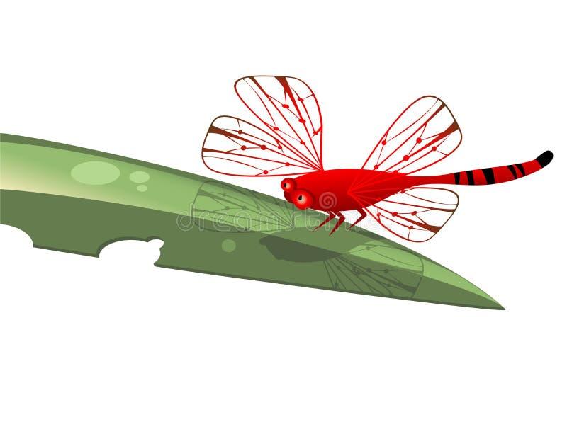 Libellula rossa illustrazione vettoriale