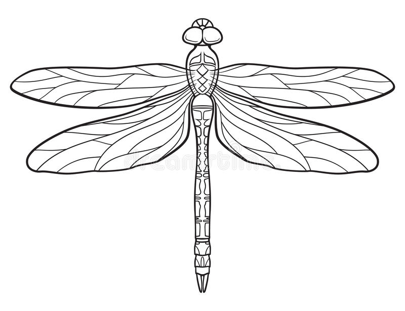 Dragonfly Tattoo Line Drawing : Libellule illustration de vecteur du été