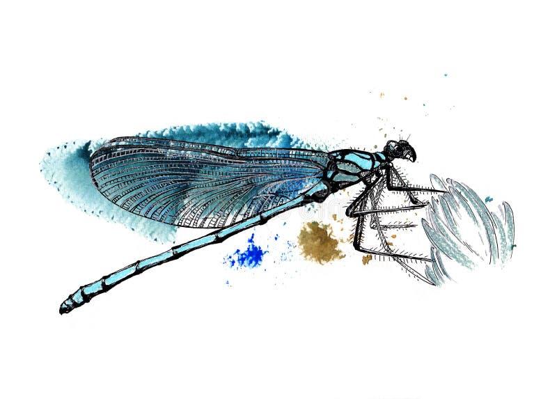 Libellule bleue illustration de vecteur