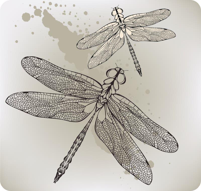 Libellule de vol, main-retrait. Illustratio de vecteur illustration libre de droits