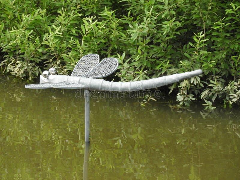Libellule, l'eau, courant, vert, for?t photographie stock