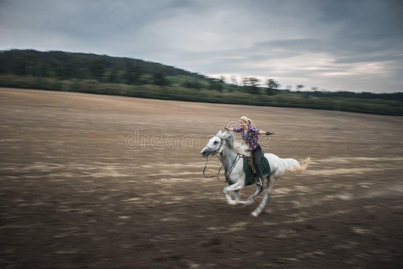 Liberdade, cavalo de galope fotografia de stock