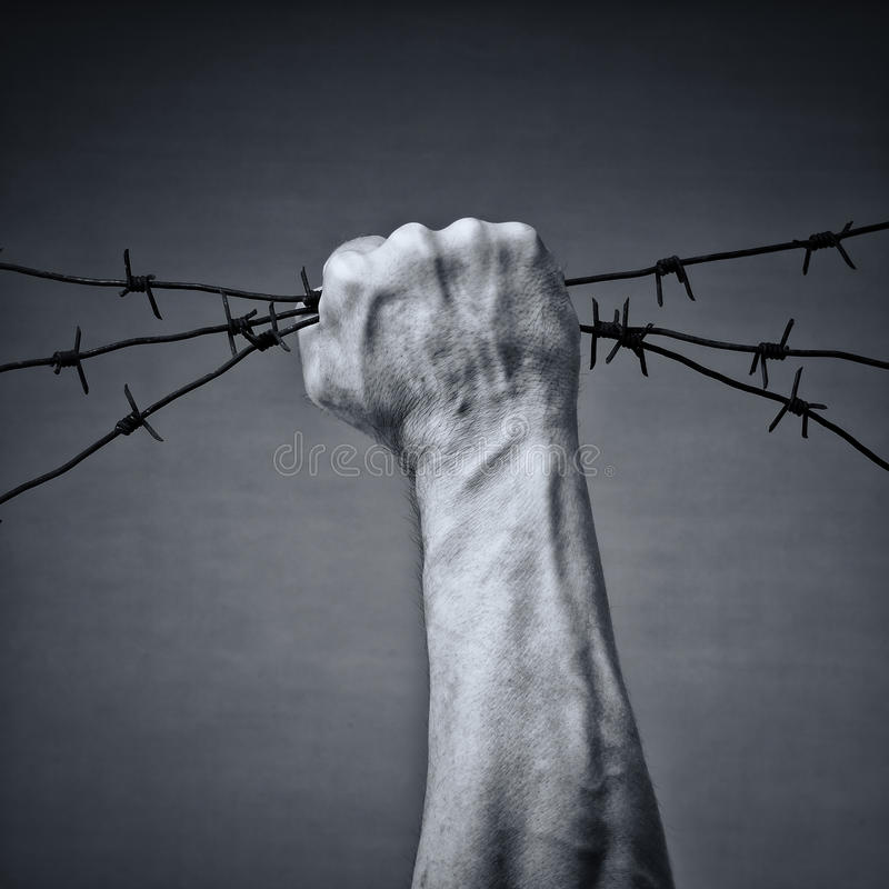 Libertà fotografie stock libere da diritti