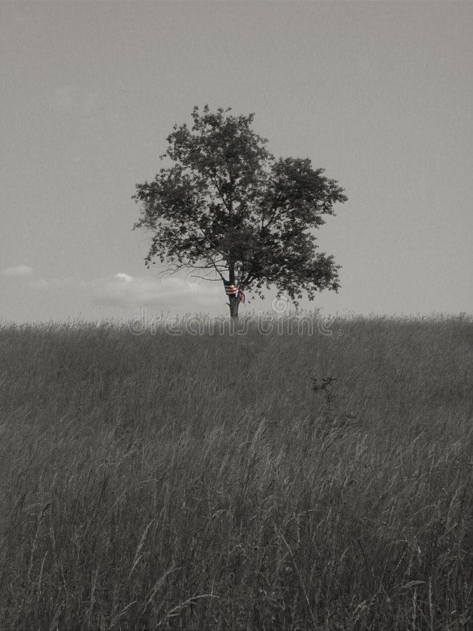 Libertà & solitudine 1 - bw fotografia stock
