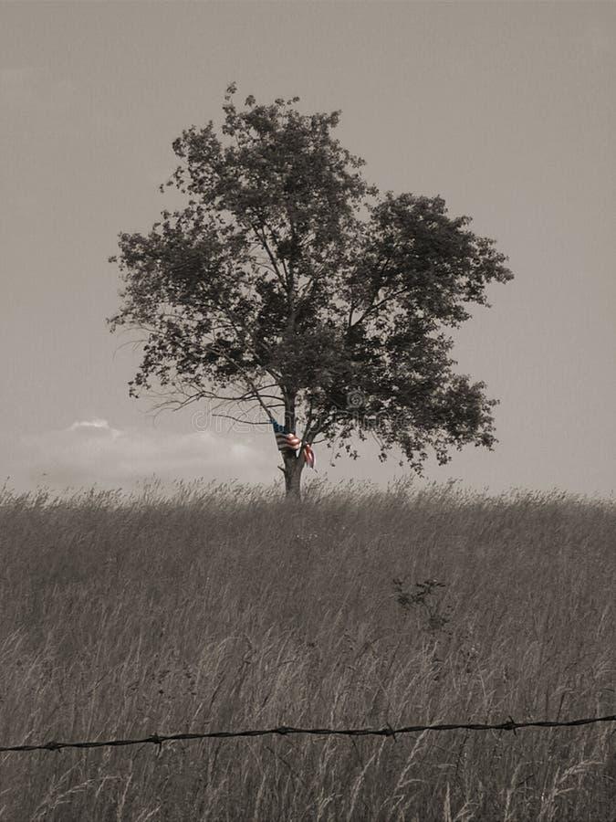 Liberté et solitude 2 - guerre biologique images stock