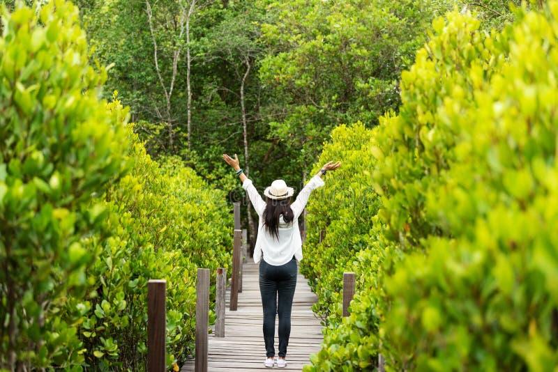 Libertad de sensación feliz de la mujer del viajero buena y relajarse en la madera del puente en bosque de la naturaleza del estu imagen de archivo