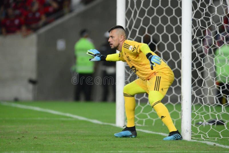 Libertadores fili?anka 2019 obraz stock