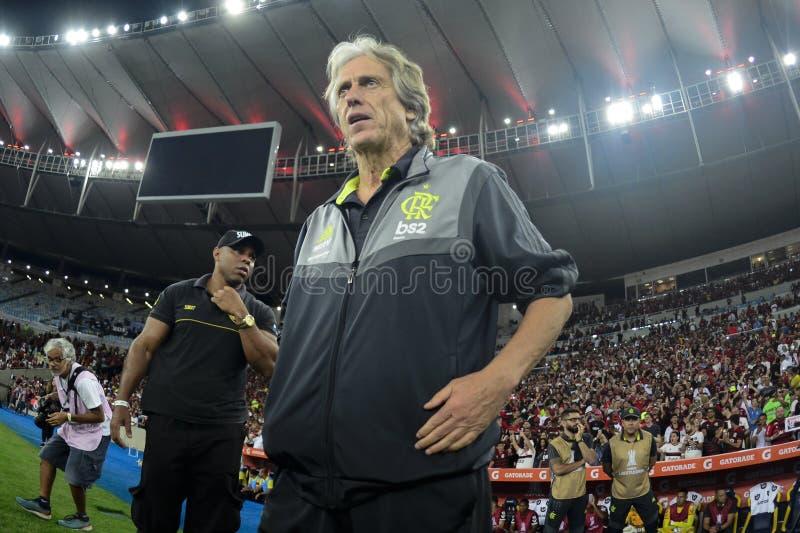 Libertadores fili?anka 2019 zdjęcie stock