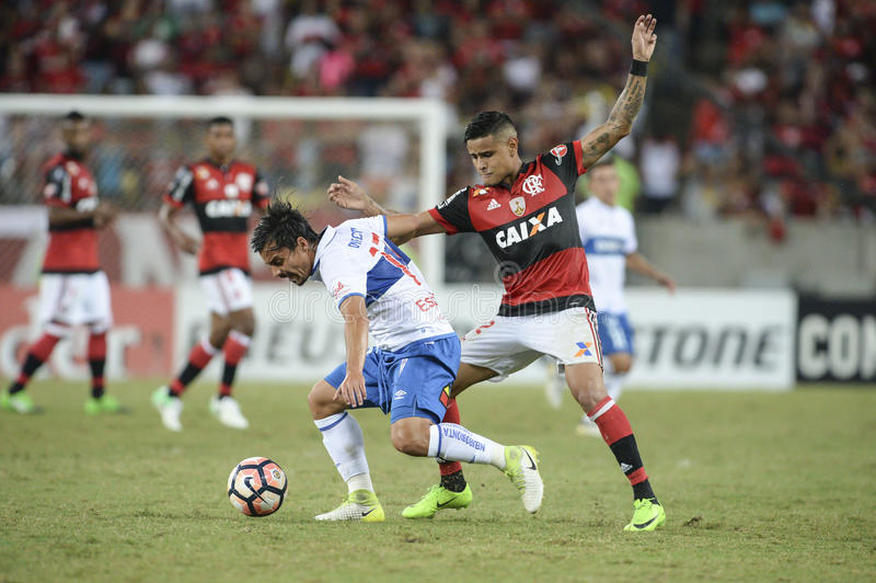 Libertadores mistrzostwo zdjęcia royalty free