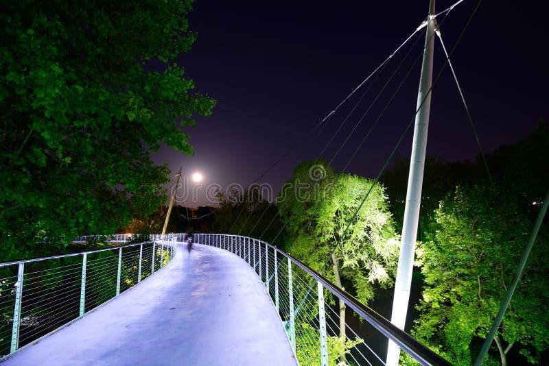 Liberty Bridge stockbild