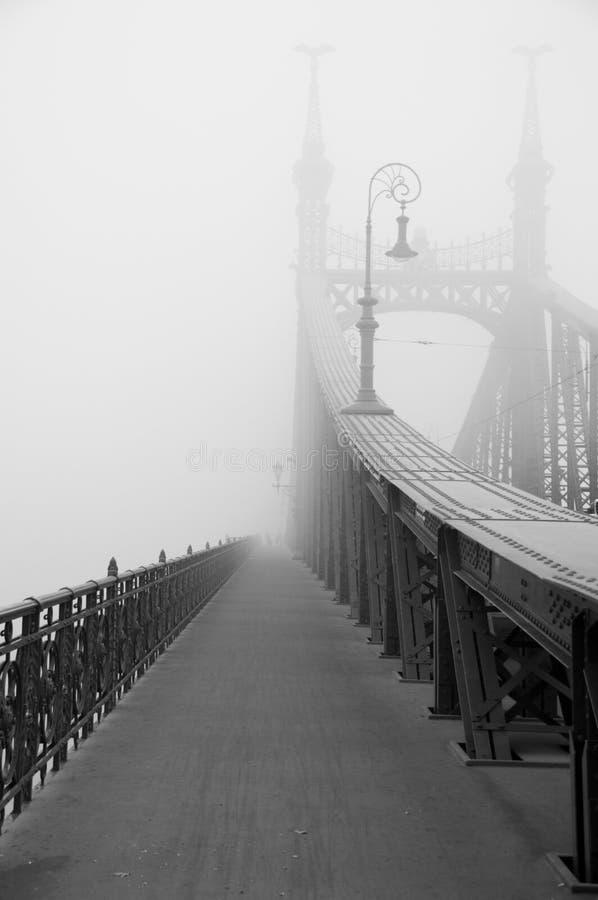 Liberty Bridge in Budapest stock photography