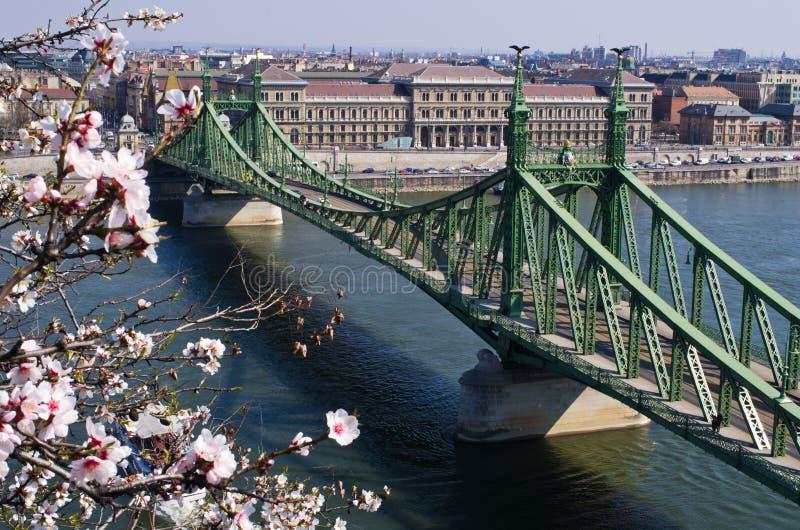 Liberty Bridge in Budapest, Ungarn lizenzfreie stockfotografie