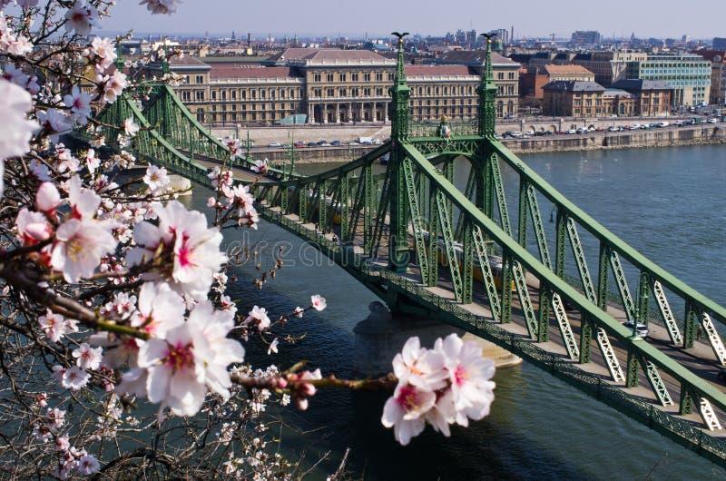 Liberty Bridge em Budapest, Hungria fotos de stock royalty free