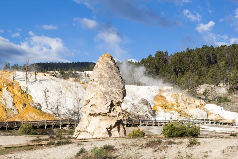 Liberty Cap, een sluimerende hete de lentekegel bij de Mammoet Hete Lente, Yellowstone stock foto's