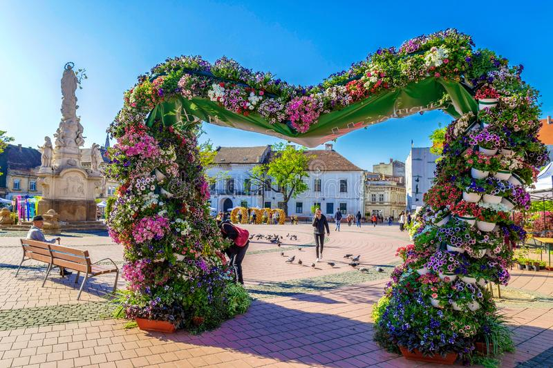 Liberty Square decorated with flowers, Timisoara, Romania. TIMISOARA, ROMANIA-APRIL 20, 2019: Liberty Square decorated with flowers. In front one big decorative stock photography