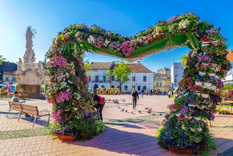 Liberty Square decorou com flores, Timisoara, Romênia fotografia de stock
