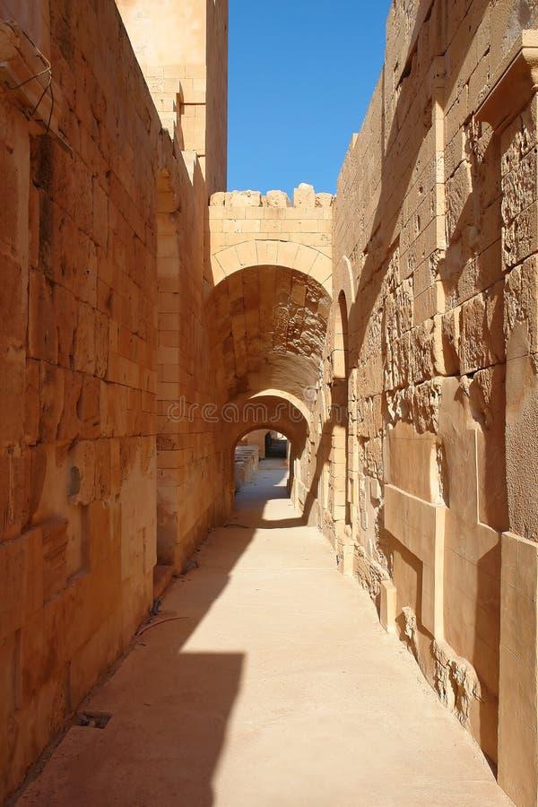 Libia royaltyfri bild