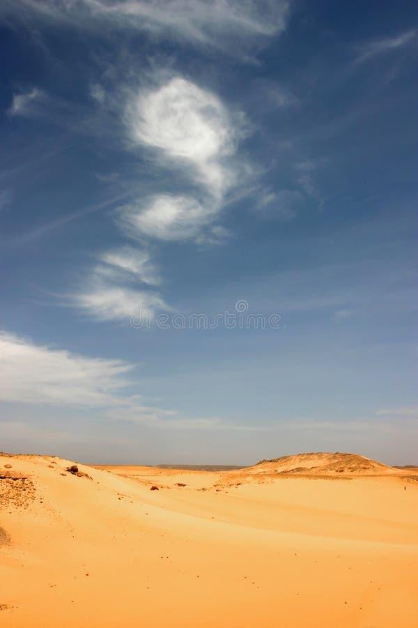 Libische woestijn. stock afbeelding