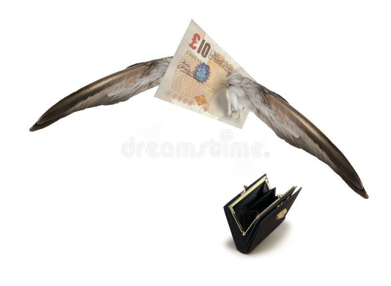 Download Libra Británica Ausente Que Vuela Foto de archivo - Imagen de alas, cuenta: 7280672