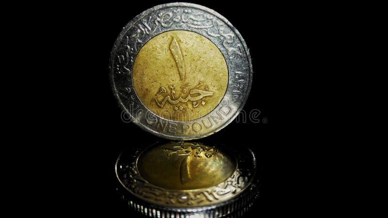 Libra de Egyption foto de archivo libre de regalías