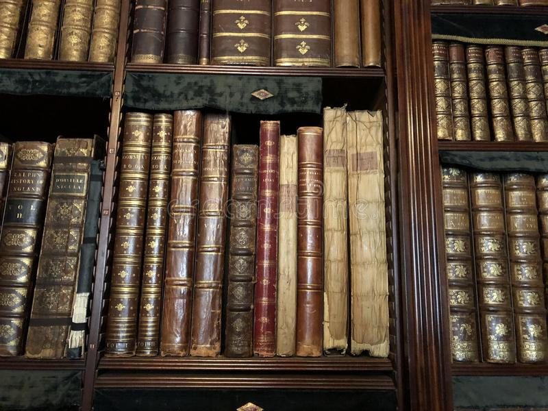 Library bookshelf filled with old books. Isolated royalty free stock photo