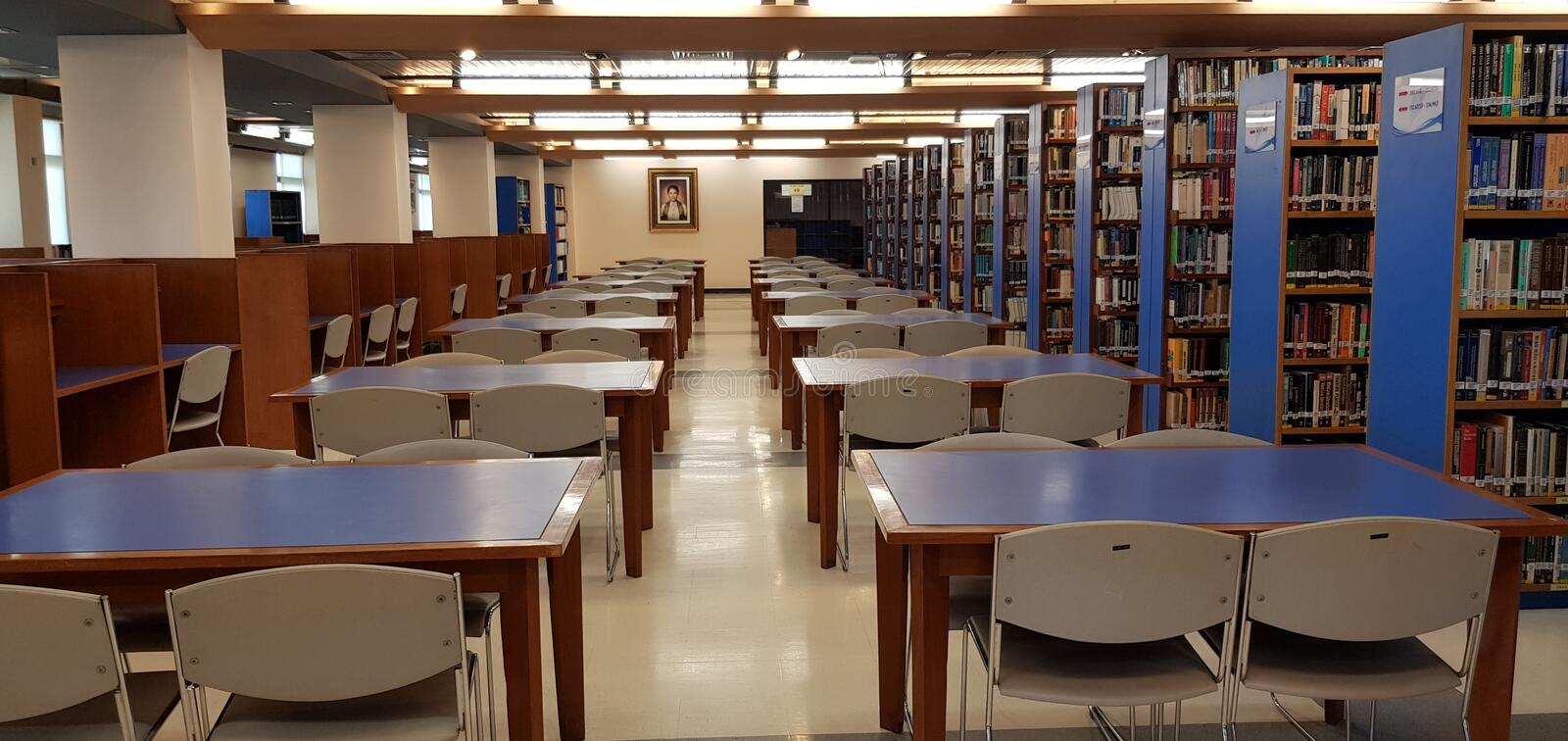 The Library royalty free stock photography