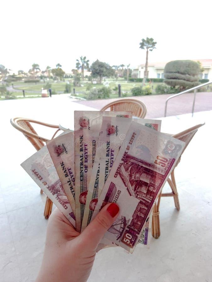 Libras egipcias, billetes de banco en una mano femenina contra el backgrou fotos de archivo libres de regalías