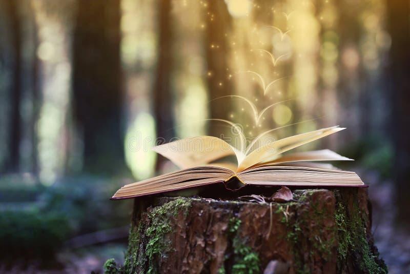 Libri aperti all'aperto La conoscenza è potenza Prenoti in un libro della foresta su un ceppo fotografie stock
