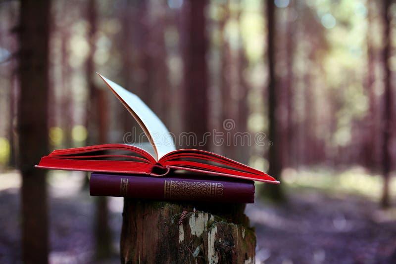 Libri aperti all'aperto La conoscenza è potenza Prenoti in un libro della foresta su un ceppo immagini stock