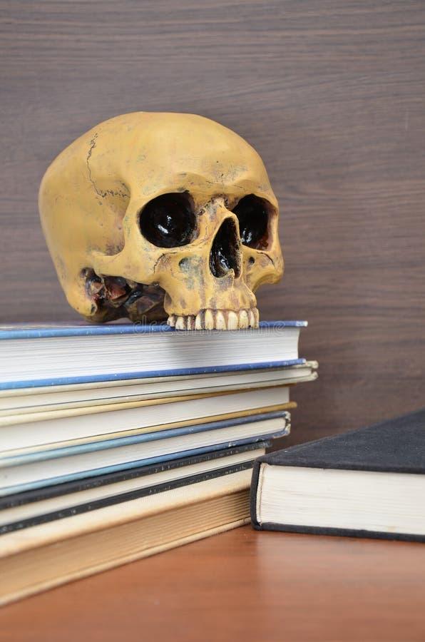 libri con il cranio umano in uno scaffale di legno fotografia stock libera da diritti