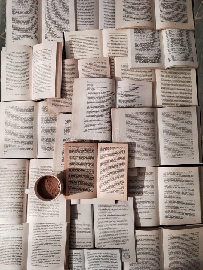 Libri e caffè immagini stock