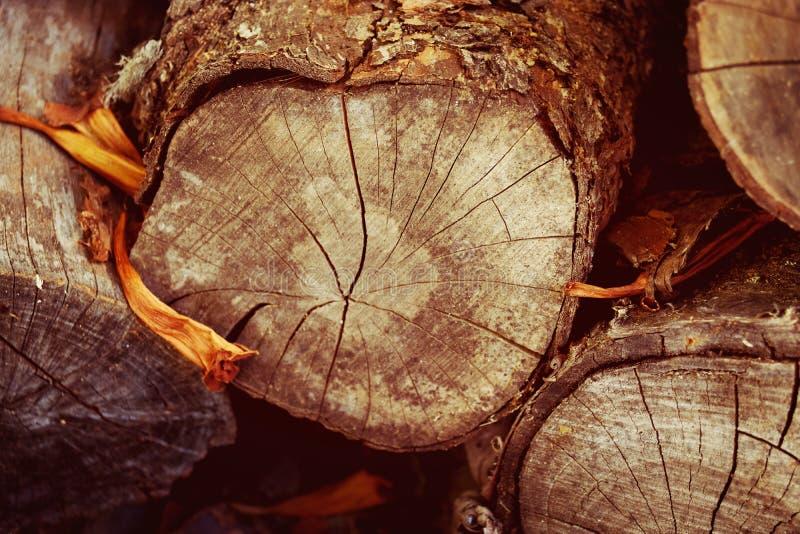Libri macchina di legno immagine stock